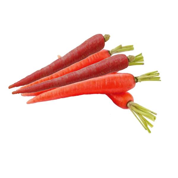 रोज २ गाजर खाने से होंगे ये कमाल के फायदे